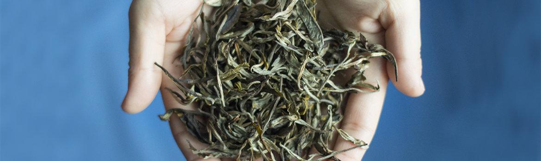 Новые эксклюзивные чаи из Вави