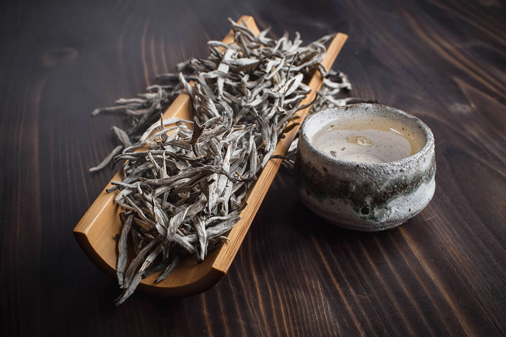 Белый вьетнамский чай с деревьев купить фото