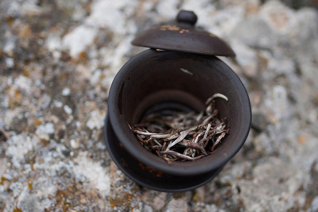 Белый чай с деревьев Вьетнама купить фото