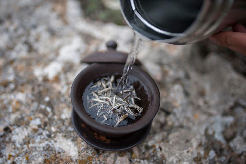 Белый чай Вьетнам купить фото