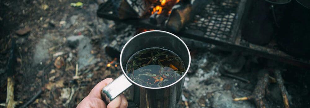Чай как путешествие во времени