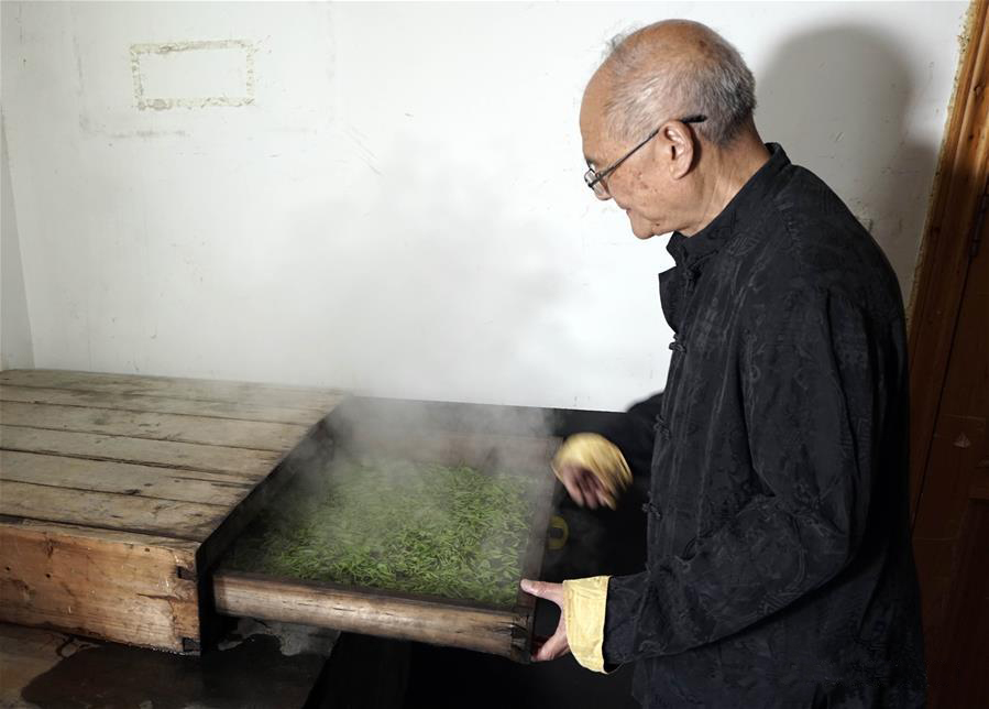 Обработка паром чая Эньши Юй Лу, Хубэй(Фотографии Синьхуа / Вэнь Линь)