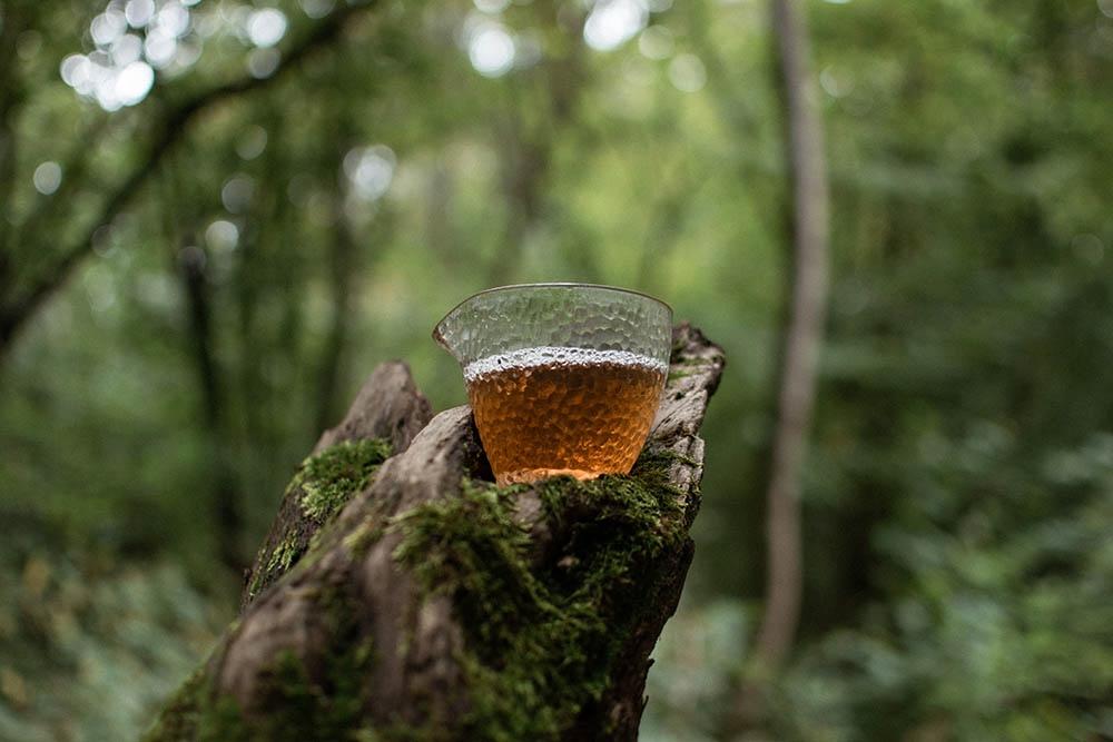 Шэн пуэр фабрика Чангтай Синий Чайник из Наньно купить фото